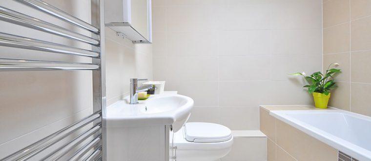איך בוחרים מוצרי היגיינה לשירותים?